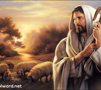 Jesus, the Perfect Priest